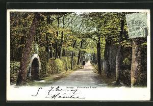 AK Jersey, Blick in die Vinchelez Lane