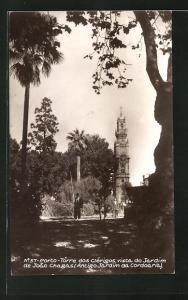 AK Porto, Torro dos Clèrigos, vista do Jardin de Joao Chagas