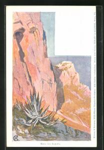 Künstler-AK Philipp + Kramer Nr. XV / 8.: Edward Harrison Compton: Motiv bei Rapallo