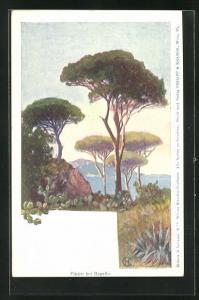 Künstler-AK Philipp + Kramer Nr. XV / 2.: Edward Harrison Compton: Pinien bei Rapallo
