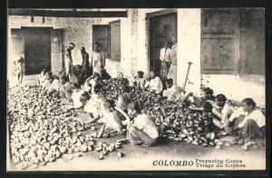 AK Colombo, Preparing Copra, singhalesiche Arbeiterinnen
