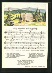 Lied-AK Anton Günther: Grüss dich Gott, mei Arzgebirg!