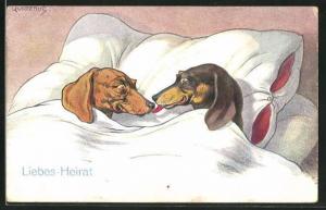 Künstler-AK Fritz Quidenus: Liebes-Heirat, Dackel im Bett schlecken sich die Schnauzen