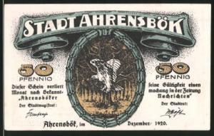 Notgeld Ahrensbök 1920, 50 Pfennig, Eule im Wald, Stadtmotiv