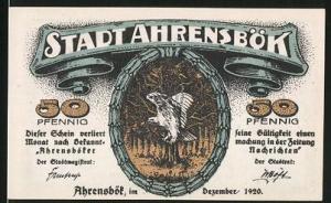 Notgeld Ahrensbök 1920, 50 Pfennig, Adler, Blick über den Ort