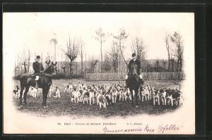 AK Pau, Chasse au Renard, Fox-Hunt, Fuchsjagd mit Hundemeute