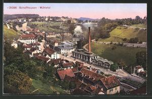 AK Schaffhausen, Blick ins Mühletal aus der Vogelschau