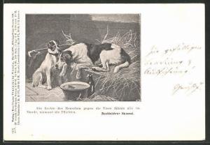 AK Berliner Tierschutz-Verein, Die Rechte des Menschen gegen die Tiere..., Verletzter Hund, Stadtpost München