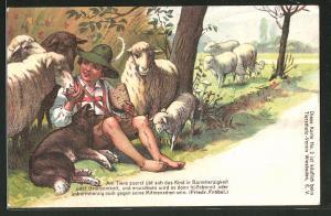 Lithographie Junge teilt sein Brott mit den Schaffen auf der Weide, Tierschutz