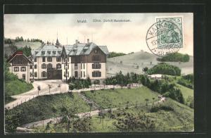AK Wald, Blick auf das Sanatorium