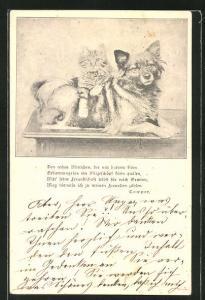 AK Berliner Tierschutz-Verein, Katze und Hund mit Spruch