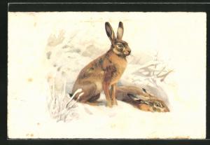 Lithographie Jagdeinladung, Hasen verstecken sich im Schnee