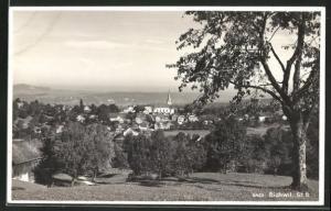 AK Bichwil, Blick von einer Anhöhe auf den Ort