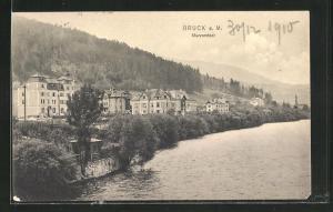 AK Bruck a. M.-Murvorstadt, Teilansicht mit Wald