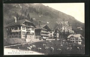 AK Chateau-d`Oex, Chalet et paturage avec Grand Hotel
