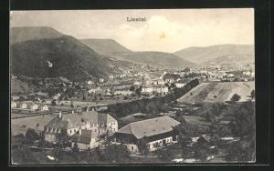 AK Liestal, Blick über den Ort