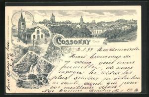 Lithographie Cossonay / Vaud, Eglise, Tinne Confant, Teilansicht der Ortschaft