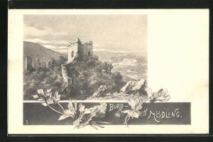 Lithographie Mödling, Burg