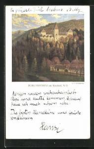 Künstler-AK Feistritz am Wechsel, Burg und Waldgebiet am Berge