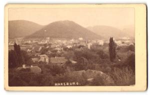 Fotografie Fotograf unbekannt, Ansicht Harzburg, Panorama der Ortschaft