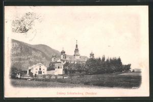 Relief-AK Schrattenberg, Blick auf das Schloss
