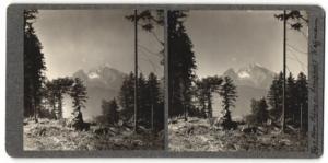 Stereo-Fotografie Fotograf unbekannt, Ansicht Watzmann, Gebirgspanorama
