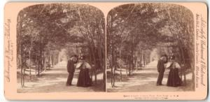 Stereo-Fotografie Strohmeyer & Wyman, New York, Ansicht New York City, Central Park Lovers Lane