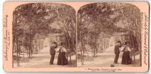 Stereo-Fotografie Strohmeyer & Wyman, New York, Ansicht New York City, Central Park, Lovers Lane