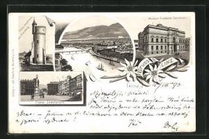 Vorläufer-Lithographie Linz, 1893, Muesum Francisco-Carolinum, Franz Josefwarte, Franz Josefplatz