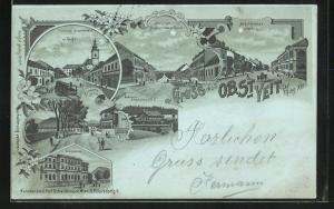Mondschein-Lithographie Wien-St. Veit, Weidmann`s Schweizerhaus, Einsideleigasse, Auhofstrasse in Hacking, etc.