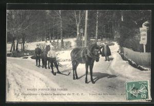 AK Wintersport, Skifahrer wird vom Pferd gezogen