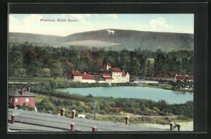 AK Westbury, White Horse, Scharrbild