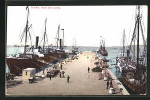 AK Trieste, Moto San Carlo, Schiffe