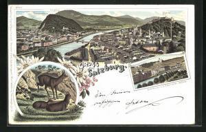 Lithographie Salzburg, Ortsansicht mit Kapuzinerberg u. Festung, Stadtbrücke m. d. Electrischen Aufzug