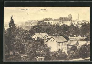 AK Zabern, Ortsansicht mit Schloss