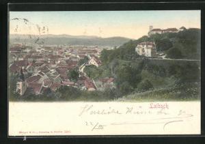 AK Ljubljana / Laibach, Panorama