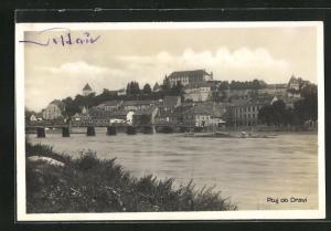 AK Ptuj ob Dravi, Panorama