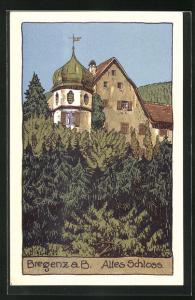 Künstler-AK Bregenz, altes Schloss
