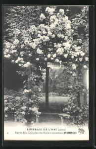 AK Roseraie de l`Hay, Entree de la Collection des Rosiers sarmenteux Multiflore