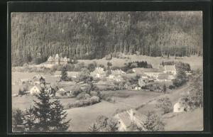 AK Mürzsteg, Ortsansicht vom Brunntalgraben aus
