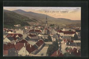 AK Bruck a. Mur, Ortsansicht vom Schlossberg aus