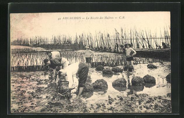 AK Arcachon, Le Recotte des Huitres, Krebsfischer 0