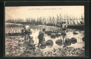 AK Arcachon, Le Recotte des Huitres, Krebsfischer