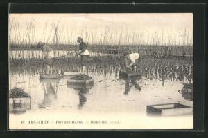 AK Arcachon, Parc aux huitres, Oysters Bed, Austernsammler bei der Arbeit