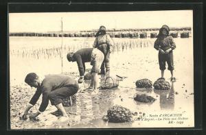 AK Arcachon, La Pêche aux Huîtres, Austernfischer