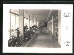 Foto-AK Adalbert Defner: Villach, Blumenbänke in einem Gebäude