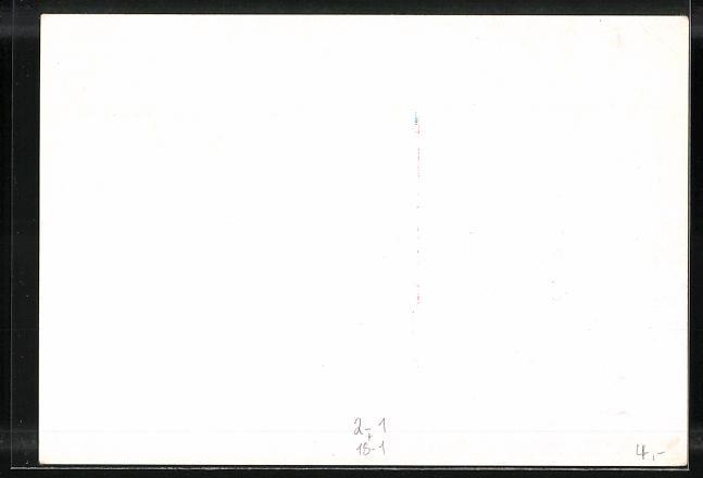 AK Wiener Klapperpost, Tag der Briefmarke 1941, Ganzsache 1