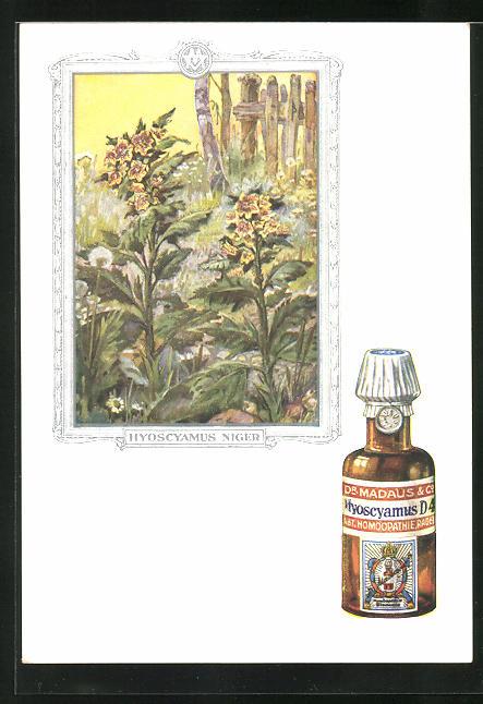AK Dr. Madaus homöopathische Heilmittel, Bilsenkraut 0