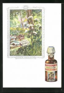 AK Dr. Madaus homöopathische Heilmittel, Schierling