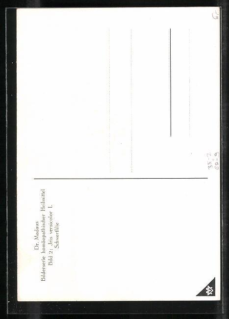 AK Dr. Madaus homöopathische Heilmittel, Schwertlilie 1